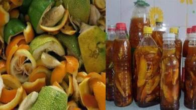 水果皮不再扔了,用來做酵素,養花不生蟲,製作方法特簡單