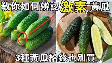 這3種黃瓜給錢也別買,老菜農教你如何辨認黃瓜打了激素