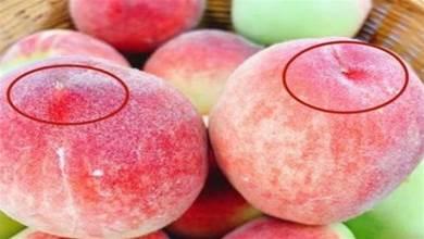 買桃子時,挑「公」的才好吃,看准這個位置,桃子個個香甜多汁