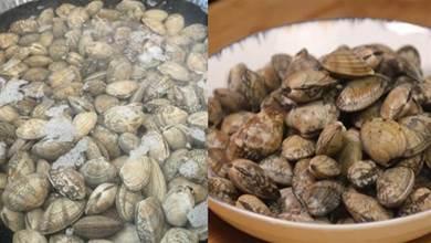 洗花蛤時,別再用鹽水泡了,老漁民教你幾招,花蛤瘋狂吐沙真實用