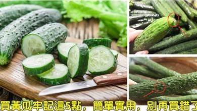 夏日裡買黃瓜怎麼選?老菜農:牢記這5點,簡單實用,別再買錯了