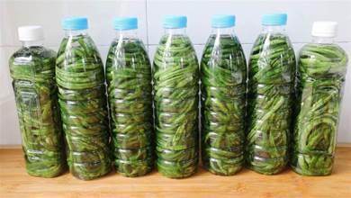 水瓶醃酸豆角,是酸的最快做法,不生白花不會壞,酸的正宗好吃