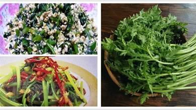 茼蒿4種家常做法,快手晚餐的首選,簡單又美味,營養價值高