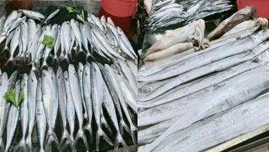中秋吃魚專挑這3種魚,連賣魚的都誇你是個行家,海邊人都經常吃