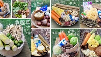 【20 道補氣養生靚湯水】不同口味的湯不同的功效,滋補養顏補身子樣樣行