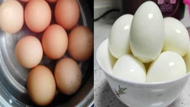 早餐煮雞蛋,有人放鹽有人放醋,早餐店老闆教我3招,鮮嫩易剝殼