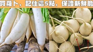 買蘿蔔時,牢記5個技巧,輕鬆避開糠心蘿蔔,個個新鮮脆嫩