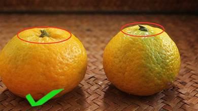 爺爺教我的買橘子方法,不能看顏色,要記住這4點,才能買到又大又甜的