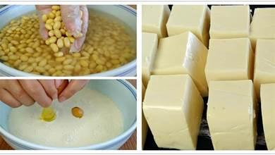 1碗黃豆3個雞蛋,廚師長教你自製豆腐,鮮嫩營養,沒有一點添加劑