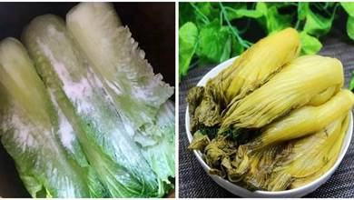 醃酸菜,學會這3招,保證你醃的酸菜,不爛不臭又入味,