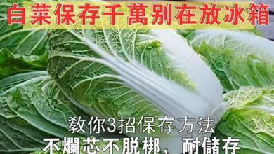 原來保存白菜這麼簡單,教你3招,不腐爛不乾癟,放幾個月不會壞