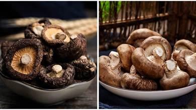 新鮮香菇與香菇幹到底有什麼不同,知道後,別再亂買了