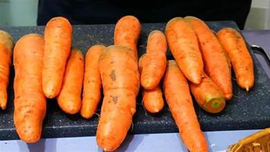 冬天保存胡蘿蔔,原來很簡單,不放冰箱不埋土,放一冬天都新鮮