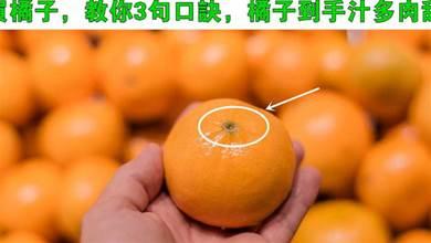 買橘子,不是越大越好,老果農教你3句口訣,橘子到手汁多肉甜