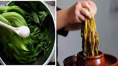醃酸菜有訣竅,謹記3個要點,酸菜又酸又脆,隨便放一年都不壞