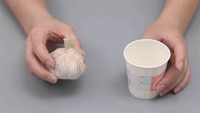 一次性紙杯裡放一顆大蒜,擺在陽臺作用太棒了,家裡人都喜歡