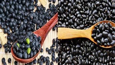 買黑豆,挑「大的」還是「小的」?營養差別大,學會可別再亂買了