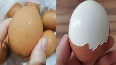 買雞蛋時,選蛋殼表面乾淨的還是髒的?超市員工:很多人都挑錯了