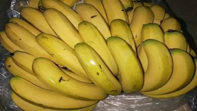 買香蕉時,內行人就看這3處,避免「催熟」香蕉,小販:真會挑