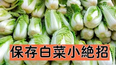 原來保存白菜一點也不難,不爛不乾癟,輕鬆放半年,冬天隨吃隨取