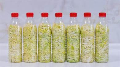 用礦泉水瓶做酸菜,既簡單又不擔心失敗,每年冬天我都要做十多瓶