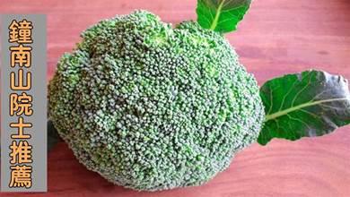 西蘭花,是鐘南山院士推薦的「超級健康食物」,但多數人卻吃錯了