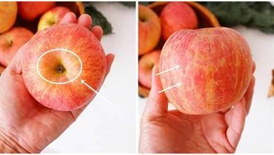 買蘋果怎麼挑?記住這4點,一挑一個准,買到母蘋果個個脆甜多汁