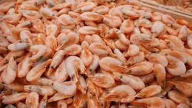 買冷凍蝦,選「直的」還是「彎的」?怎樣挑選好壞?學會別挑錯了