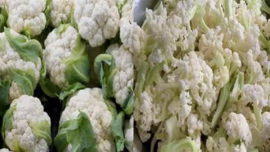 愛吃花菜的人要留意了!「散花和緊花」要分清,別再胡亂瞎買