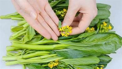 洗菜心時,小黃花要摘掉嗎?老菜農給出了2個建議,以後別亂吃了