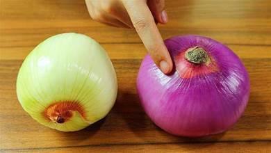 今天才知道,白皮洋蔥和紫皮洋蔥的區別,記住以後別亂買了