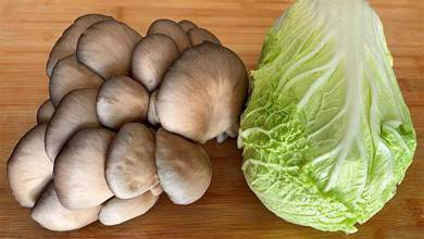 蘑菇加白菜這樣做真好吃,不炒也不燉,我家一周吃5次,真香
