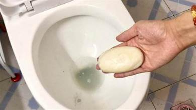 馬桶裡放一塊香皂,真是厲害,解決了男人女人的煩惱,都看看吧