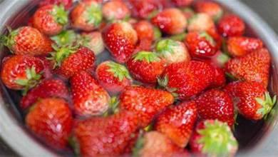 別再用鹽水洗草莓了,教你一招,讓蟲卵自動跑出來,吃著更放心