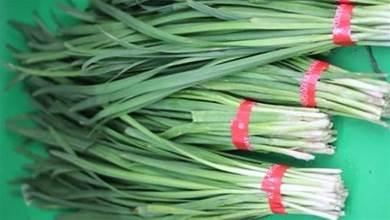 葉韭菜和細葉韭菜有什麼區別?看了終於明白了,以後別再瞎買了