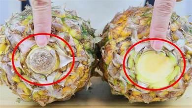 菠 蘿好不好,看一眼這個位置就知道,一挑一個准,個個香甜又多汁