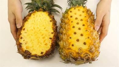 菠 蘿和鳳梨到底有什麼區別?10人9人錯,看了文章終於弄明白了