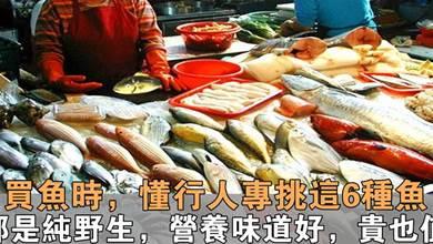 會吃魚的人,專買這6種魚!營養高還不貴,關鍵都是野生的,香