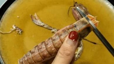 皮皮蝦剝皮有妙招,一根筷子就搞定,5秒鐘剝一個,再不怕扎手了