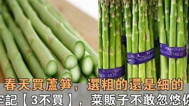 春天買蘆筍,選粗的還是細的?牢記3個技巧,菜販子不敢忽悠你