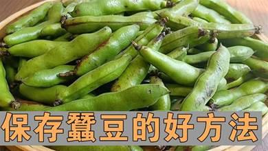 蠶豆保存時,不要焯水也別直接放冰箱,教你一招,放一年還新鮮