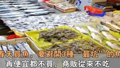 買魚時要注意,這3種魚不要買,白送也不要,要是早點知道就好了