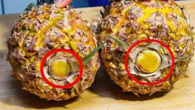 買菠 蘿,切忌買全黃的,牢記4個竅門,鳳梨又香又甜,一挑一個准