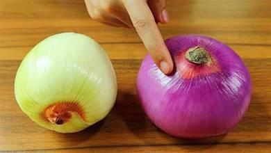 今天才知道,白皮洋蔥和紫皮洋蔥的區別,記住以後別亂買了!