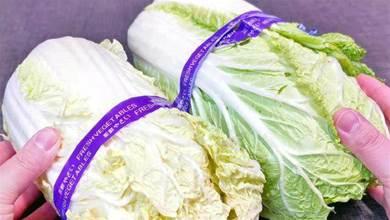 買大白菜時,挑綠色的還是黃色的?老菜農:牢記3點,就不會買錯!